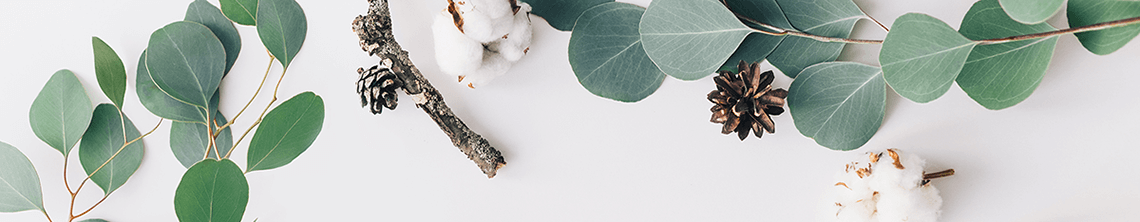 分子栄養学・看護師が綴る栄養療法ブログ長野|いますぐ使える栄養の知識を発信中